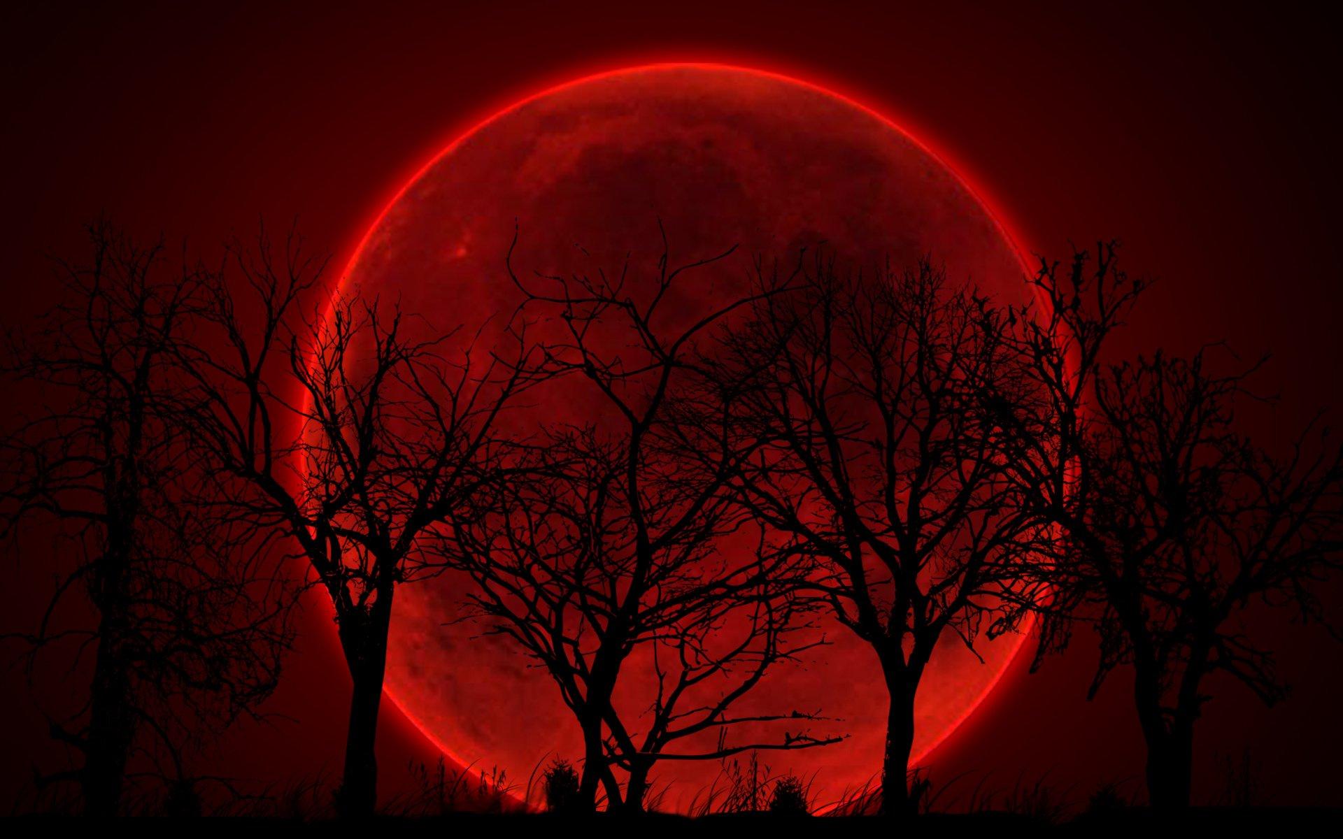 SCHIÖN - MÁXIMA SUPERAÇÃO  - Página 3 Lua-sangrenta-2-badwolf