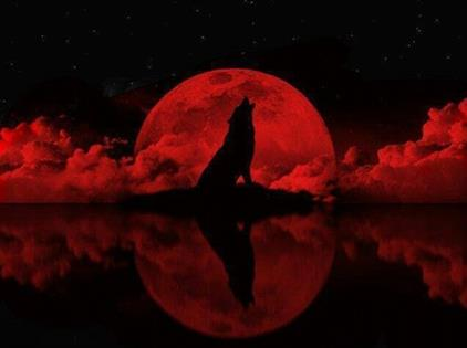 badwolf red